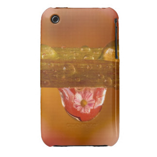 Raindrop Reflections iPhone 3G 3GS Case Case-Mate iPhone 3 Cases