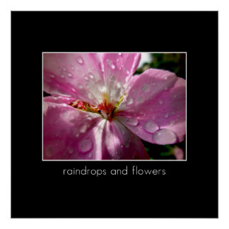 Raindrops and Flowers Poster
