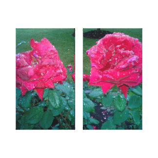 RAINDROPS AND RED ROSES canvas