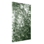 Raindrops Gallery Wrapped Canvas