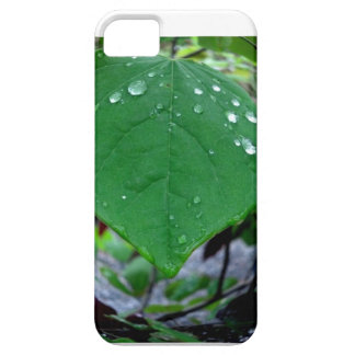 Raindrops iPhone SE/5/5s Case