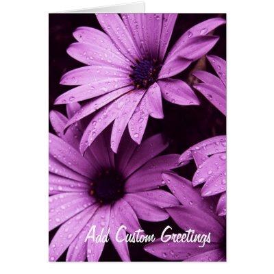 Raindrops Lilac Daisy Flower Custom Card
