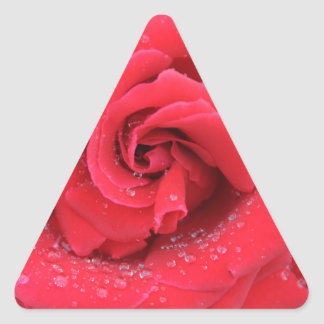 Raindrops on a Red Rose Triangle Sticker