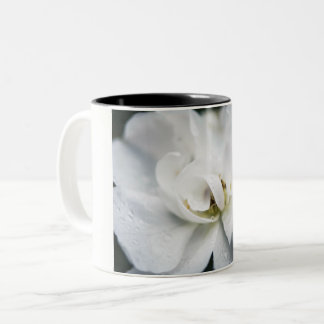 Raindrops on a white rose Two-Tone coffee mug