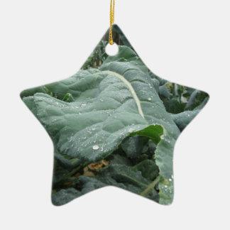 Raindrops on cauliflower leaves ceramic ornament