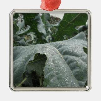 Raindrops on cauliflower leaves metal ornament