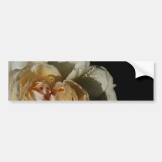 Raindrops on Champagne cream White Rose floral Bumper Sticker