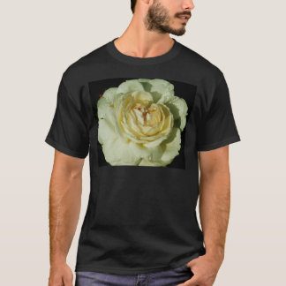 Raindrops on Champagne White Rose floral T-Shirt