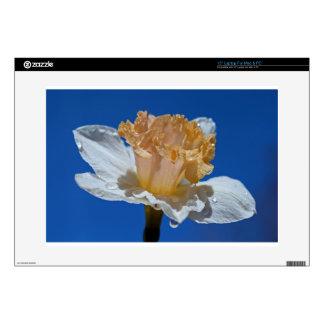 Raindrops on Daffodils Laptop Skin