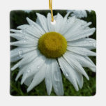 Raindrops on Daisy II Summer Wildflower Ceramic Ornament
