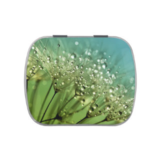 Raindrops on dandelions jelly belly tins