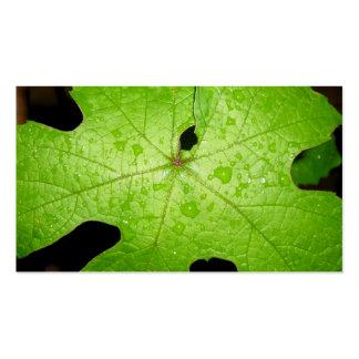 Raindrops on Grape Leaf Business Card