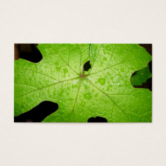 Raindrops on Grape Leaf Business Card