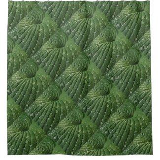Raindrops on Green Hosta Leaf Shower Curtain