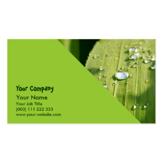 Raindrops on green leaf business card