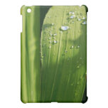 Raindrops on green leaf case for the iPad mini
