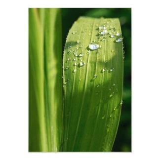 Raindrops on green leaf 5x7 paper invitation card