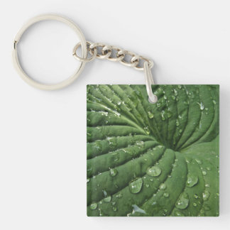Raindrops on Hosta Leaf Acrylic Keychain