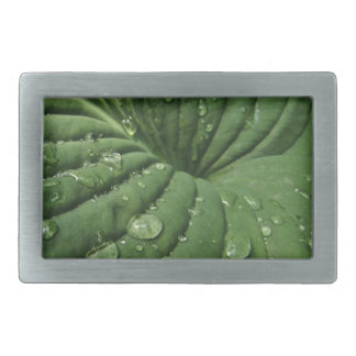 Raindrops on Hosta Leaf Belt Buckle