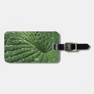 Raindrops on Hosta Leaf Luggage Tag