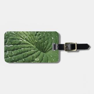 Raindrops on Hosta Leaf Luggage Tag