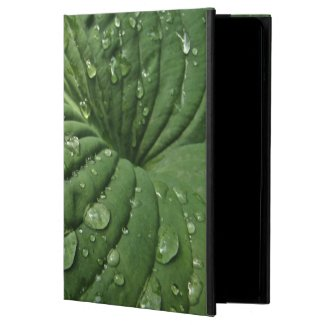 Raindrops on Hosta Leaf Powis iPad Air 2 Case