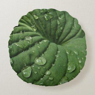 Raindrops on Hosta Leaf Round Pillow