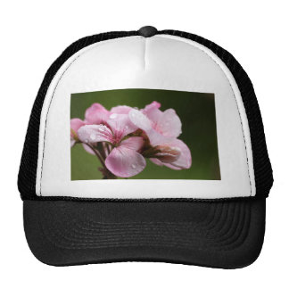 Raindrops on Ivy-Geranium over a natural green bac Trucker Hat