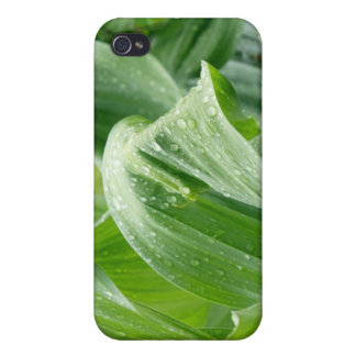 Raindrops on Leaves iPhone 4 Case