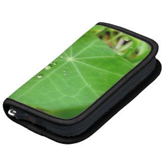 Raindrops on nasturtium leaf planner