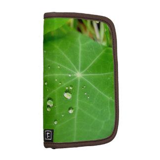 Raindrops on nasturtium leaf folio planners