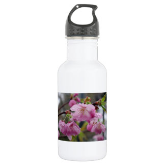 Raindrops on pink cherry blossoms stainless steel water bottle