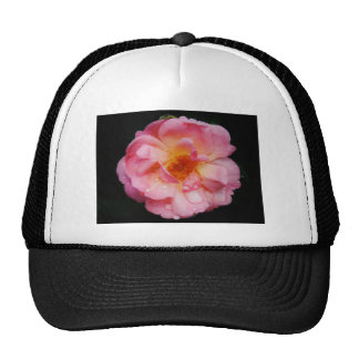 Raindrops on Pink Rose Flower Photo Trucker Hat
