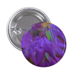 Raindrops on Purple Leaves Pinback Button