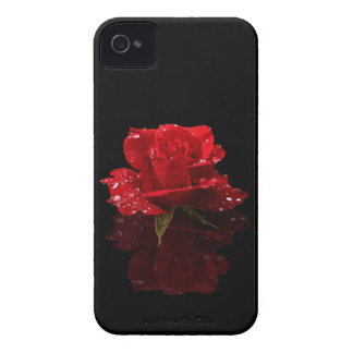RAINDROPS ON ROSE iPhone 4 COVER