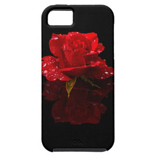 RAINDROPS ON ROSE iPhone 5 COVER