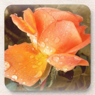 Raindrops on Roses..... Beverage Coaster