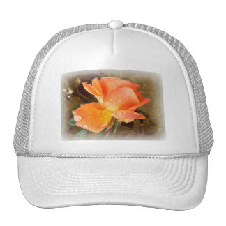 Raindrops on Roses Hat