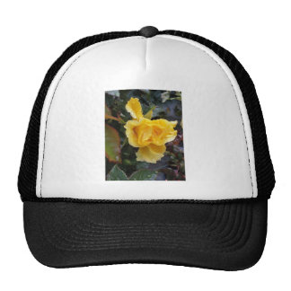 Raindrops on Roses - Yellow Rose Trucker Hat