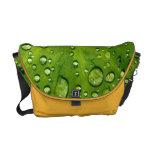 Raindrops on taro leaf courier bag