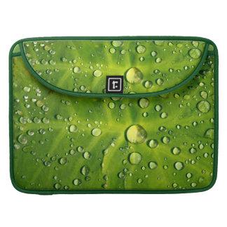 Raindrops on taro leaf MacBook pro sleeve