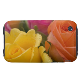 Raindrops on Yellow Orange and Pink Roses iPhone 3 Tough Cases