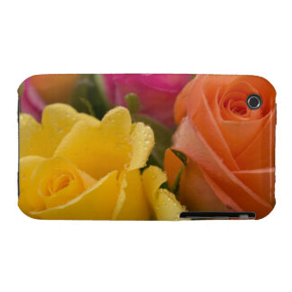 Raindrops on Yellow Orange and Pink Roses iPhone 3 Case