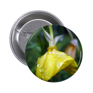Raindrops on Yellow Tulip Pinback Button