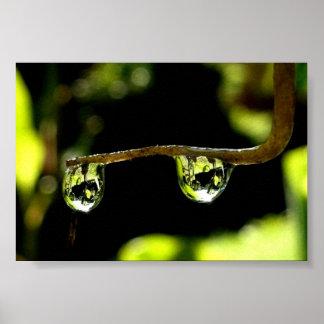 Raindrops Posters