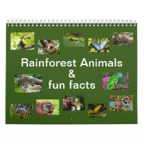 Rainforest Animals & Fun Facts 12 month Calendar