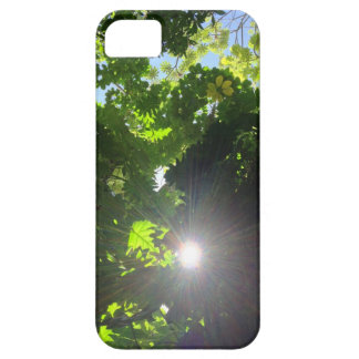 Rainforest Canopy iPhone SE/5/5s Case