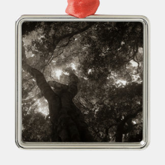 Rainforest Canopy Metal Ornament