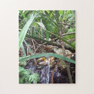Rainforest Creek Puzzle