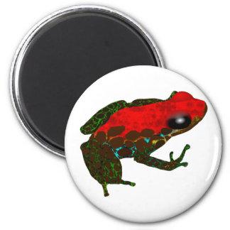 Rainforest Dart Frog 2 Inch Round Magnet